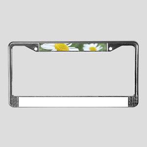 Camomile Garden License Plate Frame