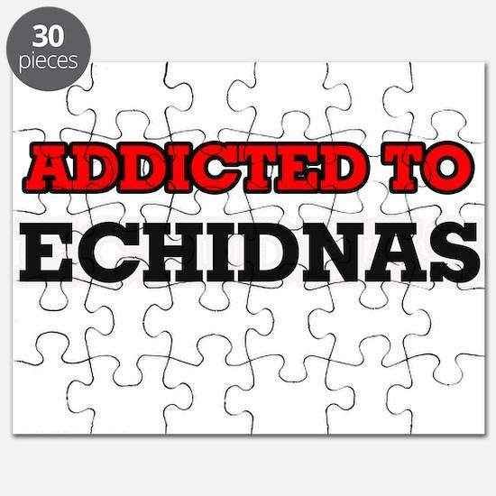 Addicted to Echidnas Puzzle