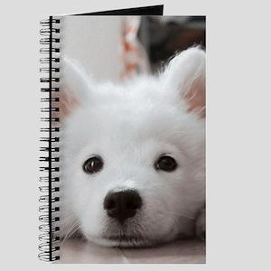 Samoyed Puppy Journal