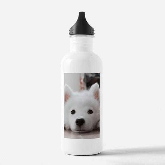 Samoyed Puppy Water Bottle