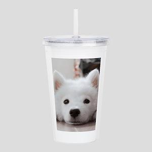 Samoyed Puppy Acrylic Double-wall Tumbler