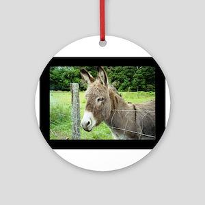 Holy Crap Donkey Ornament (Round)