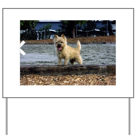 Young Cairn Terrier Yard Sign