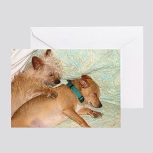 Ozzie and Linus Greeting Card