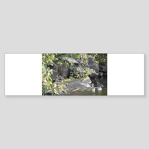 Lake Vermilion Ledgerock Bumper Sticker