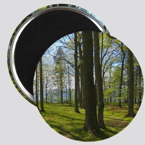 Nature scenery Magnets