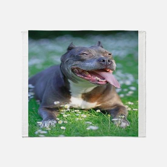Pit Bull Throw Blanket