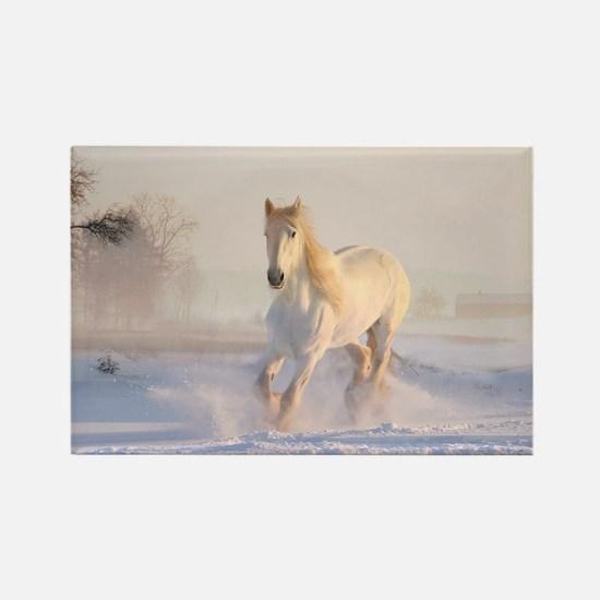 white horse h678 Magnets