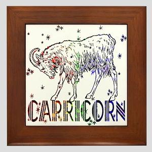 CAPRICORN SKIES Framed Tile