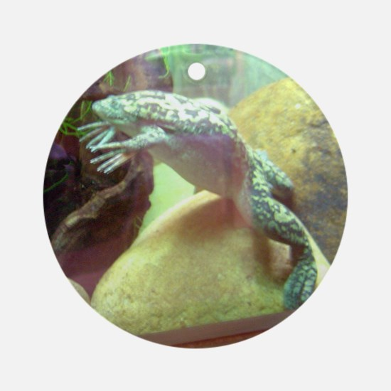 african clawed frog Ornament (Round)