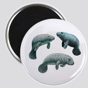 MANATEES Magnets