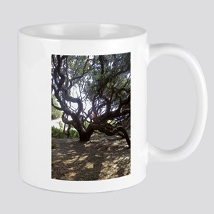 Large Live Oak on Cumberland Island Mugs