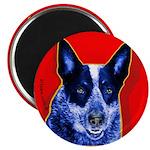 Blue Heeler Magnet