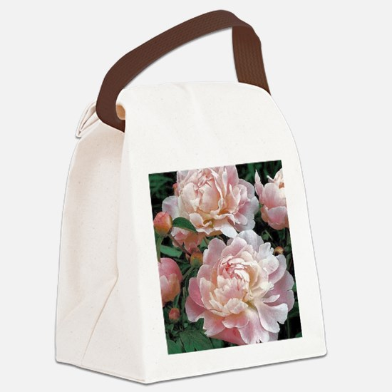 Cute Fine art Canvas Lunch Bag
