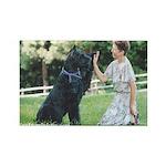 Zion & Joy Rectangle Magnet (100 pack)