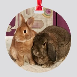 Tater And Joelle: Bonded Rabbits Round Ornament