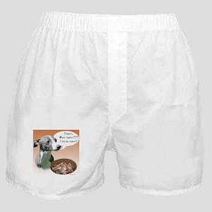 Iggy Turkey Boxer Shorts