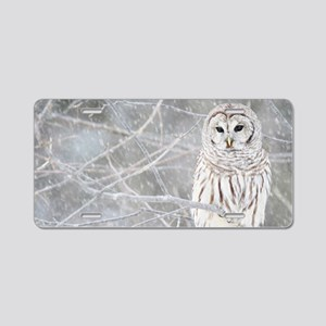 Barred Owl in Winter Aluminum License Plate