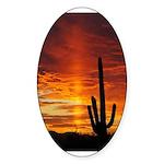 Saguaro Sunset Oval Sticker