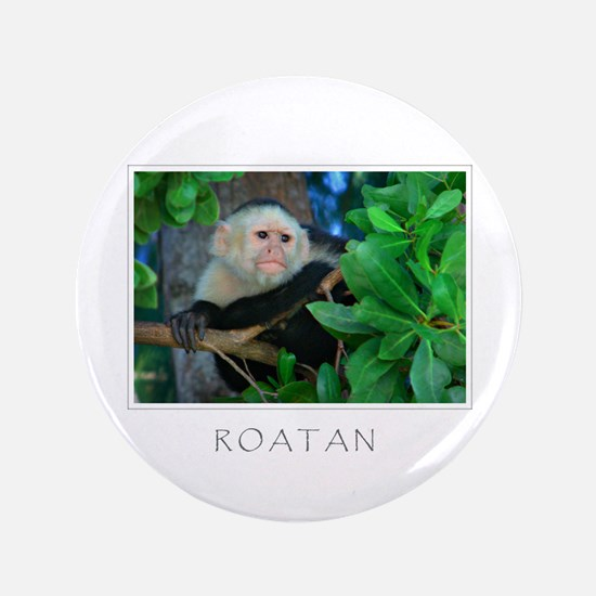 "Monkey Roatan 3.5"" Button"