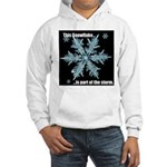 Snowflake STORM Sweatshirt