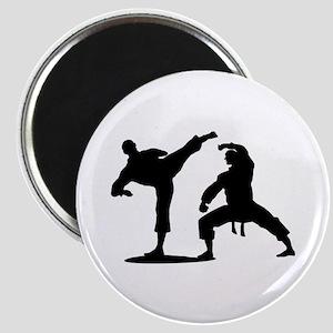 Martial arts Magnets