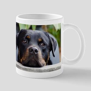 LS rottweiler 2 Mugs