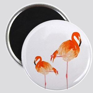 FLAMINGOS Magnets