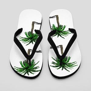 PALMS Flip Flops