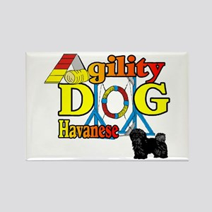 Havanese Agility Rectangle Magnet (10 pack)