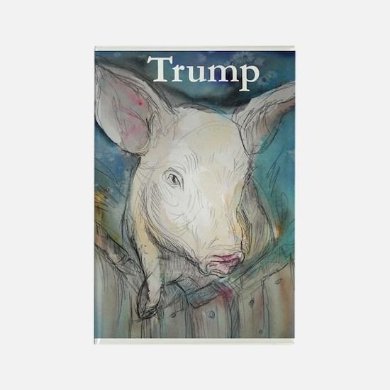 Anti Trump, pig Magnets