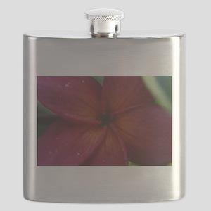 Red Plumeria Flask