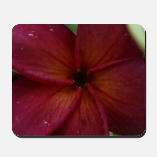 Red Plumeria Mousepad
