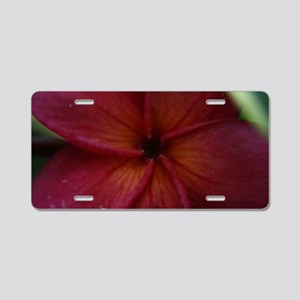 Red Plumeria Aluminum License Plate
