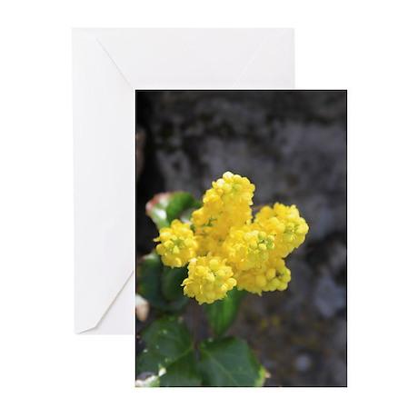Oregon Grape Flower Greeting Cards