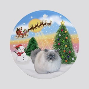 Take OFf 1 & Himalayan cat Ornament (Round)