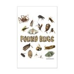 Found Bug Mini Poster Print