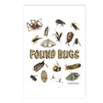 Found Bug Postcards (Package of 8)