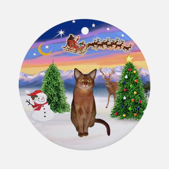 Take Off (3) & Abyssinian (R) Ornament (Round)