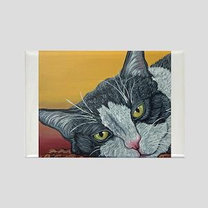 Tuxedo Cat Magnets