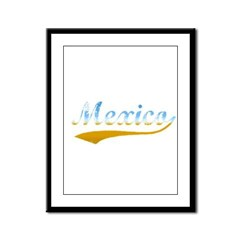 Beach Mexico Framed Panel Print