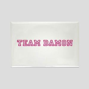 Team Damon Magnets