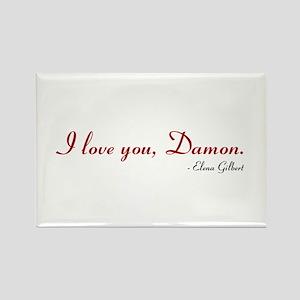 I love you, Damon. Magnets
