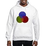 Alcohol-Girls-Responsibility Hooded Sweatshirt