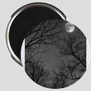 Moonlite Night Magnets