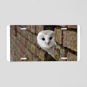 Peek-a-Boo Owl Aluminum License Plate