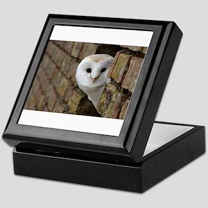Peek-a-Boo Owl Keepsake Box