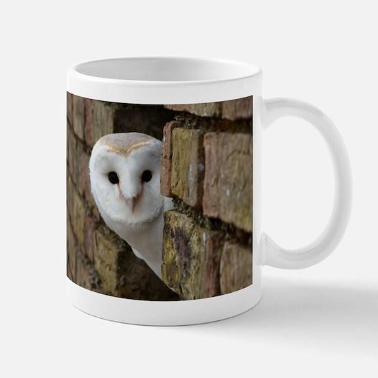 Peek-a-Boo Owl Mugs