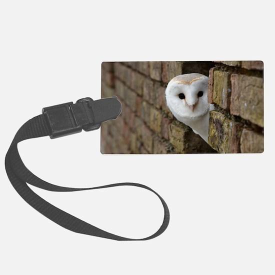 Peek-a-Boo Owl Luggage Tag