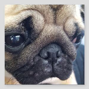 "Thinking Pug Square Car Magnet 3"" x 3"""